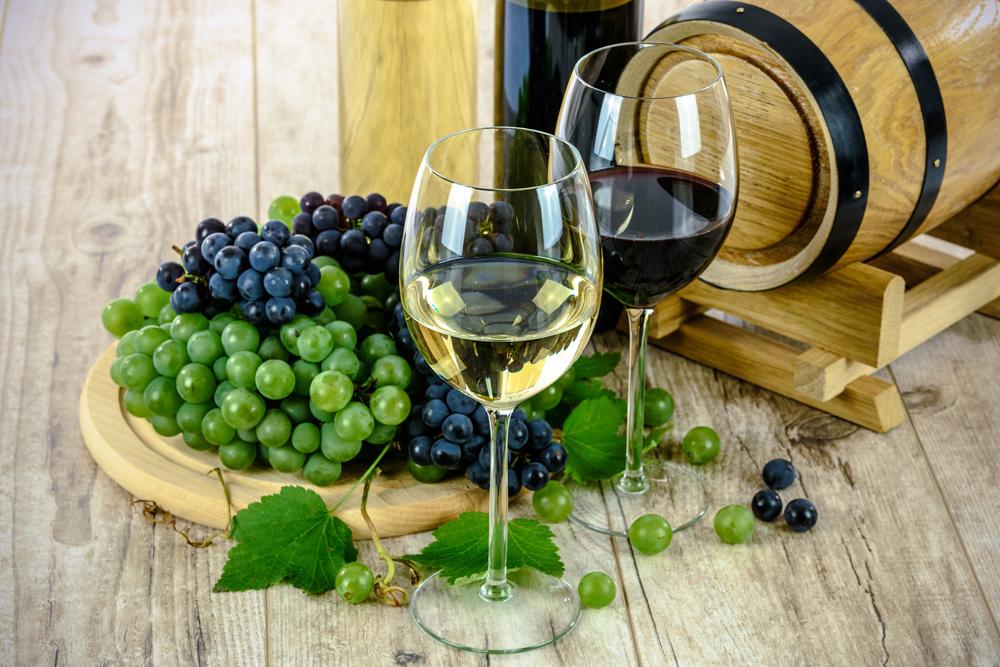 Izlet u bečke vinograde: Šetnja i degustacija vina